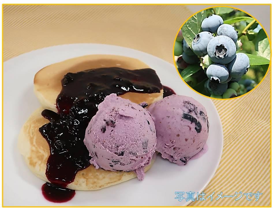 【杜の感謝祭】 ブルーベリーを収穫してアイスとパンケーキを作ろう