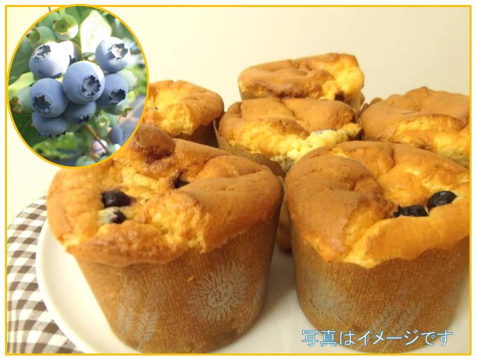 ブルーベリーを収穫してふわふわカップケーキを作ろう