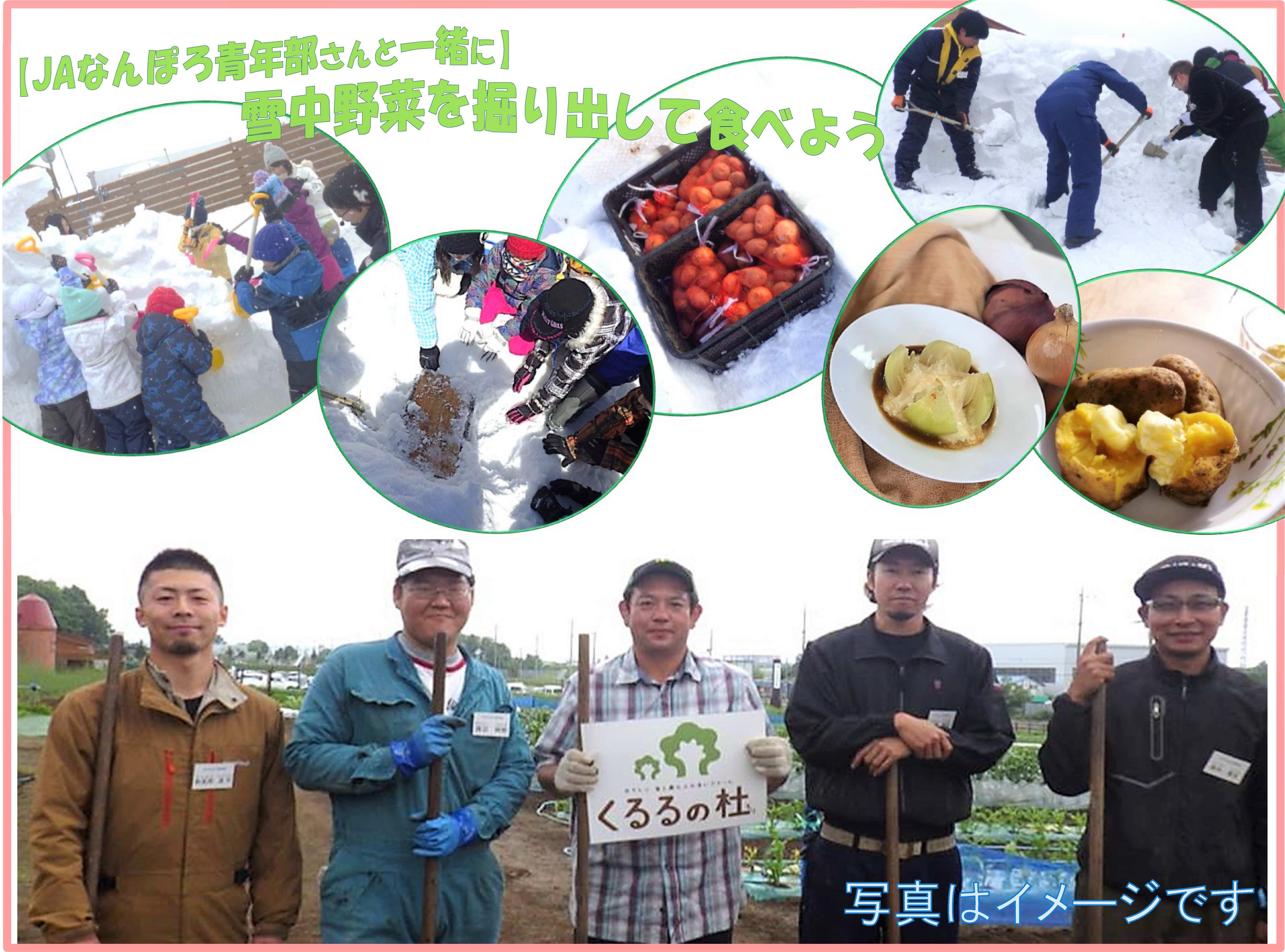 【JAなんぽろ青年部さんと一緒に】雪中野菜を掘り出して食べよう