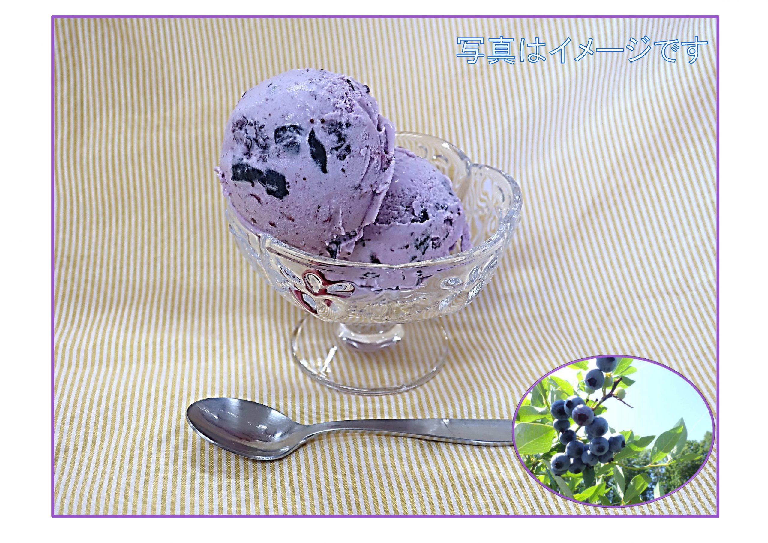 ブルーベリーを収穫してアイスを作ろう